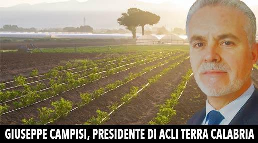 Giuseppe Campisi