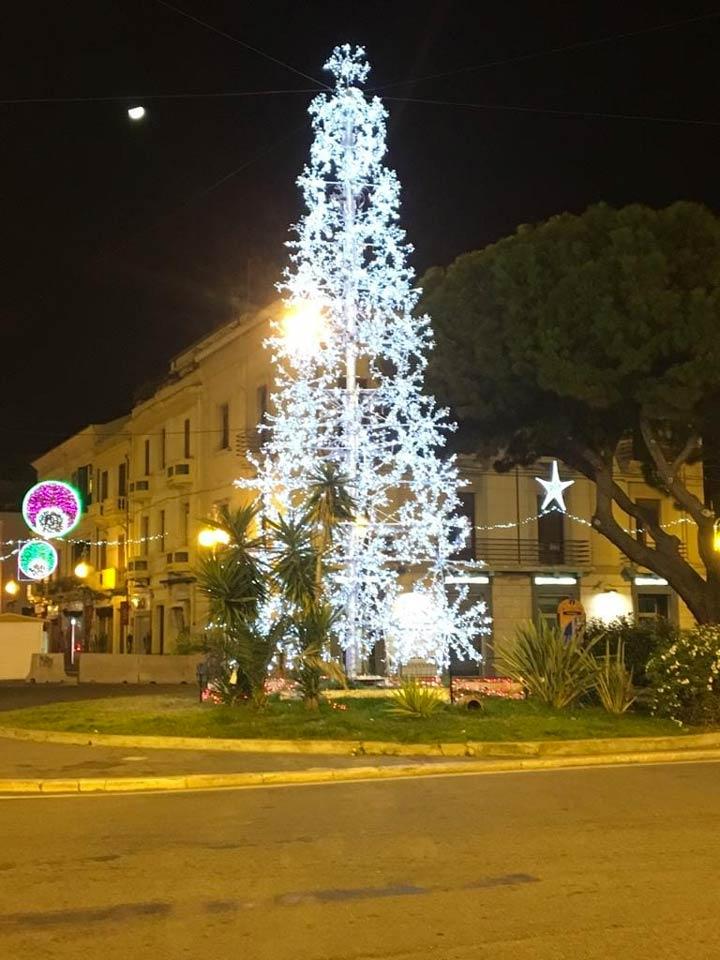 Albero Natale crotone