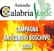 CalabriaVerdedx