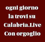 Calabria.Live manchette dx