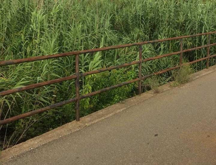 torrente cantagalli
