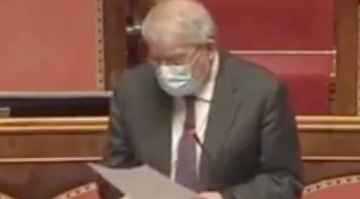 Magorno in Senato