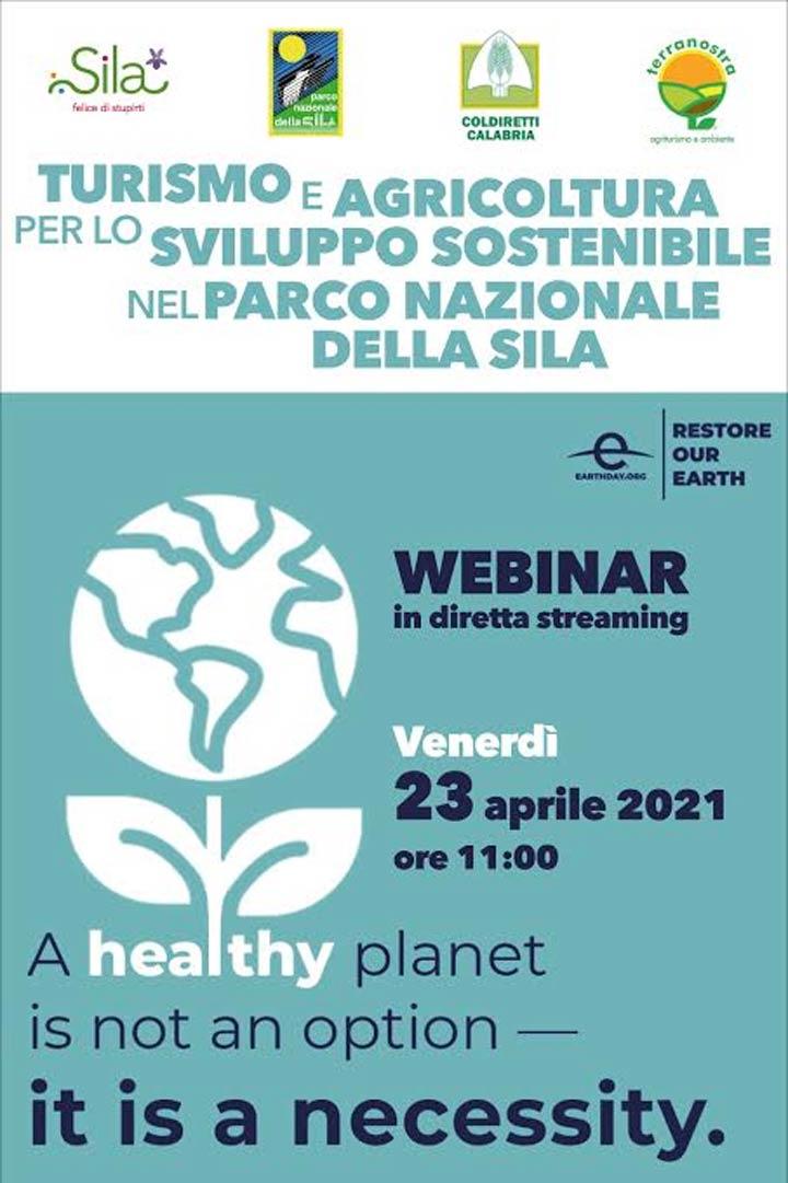 webinar su sostenibilità